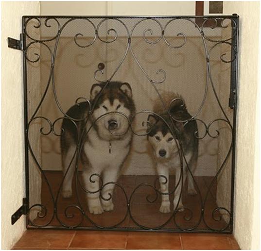 Custom steel dog gate enclosing two huskies